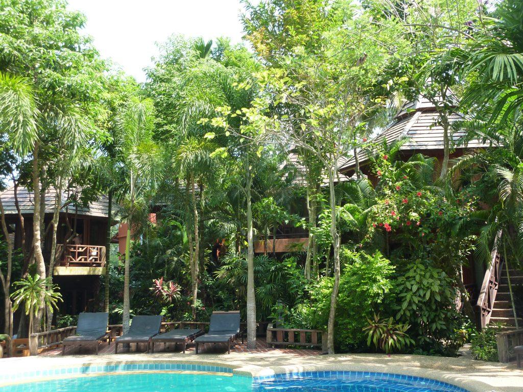 Ola Lodge et l'empreinte tropicale